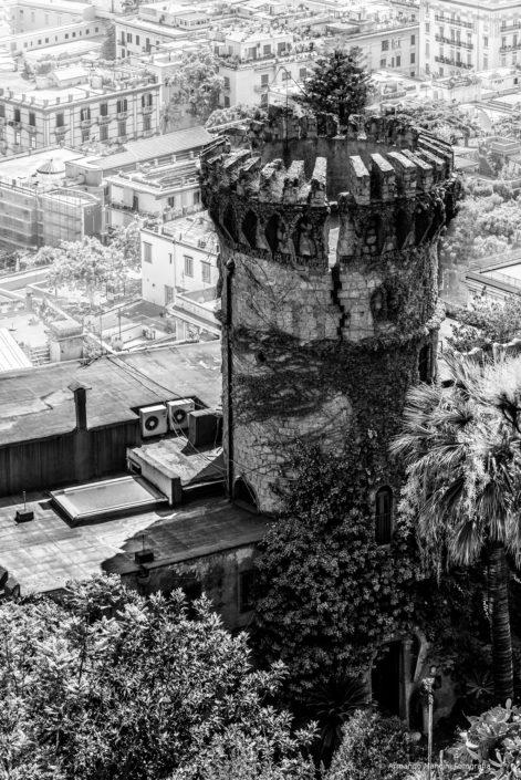 La torre del parco Grifeo