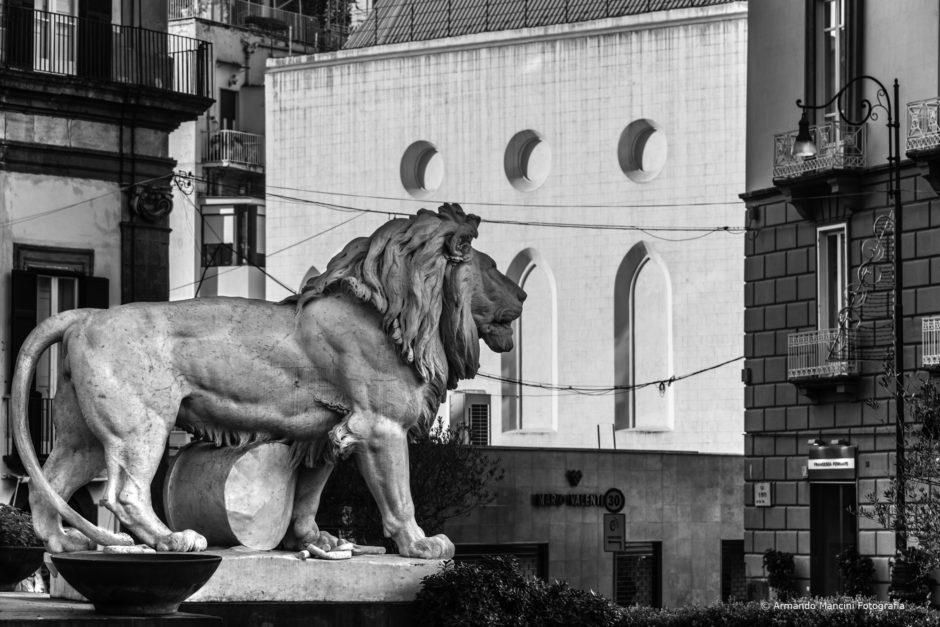 Il leone in piedi (Piazza dei Martiri)
